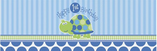 First Bday Turtle Party